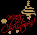 PADAGAS starts CHRISTMAS SALE for winter